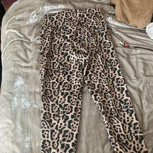 Skatie leopard calabassas pants